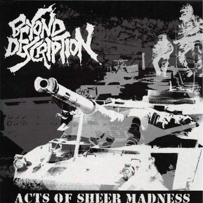Beyond Description, acts of sheer madness - CD