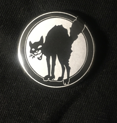 "Black cat- 1"" pin"