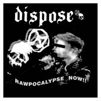 Dispose/Infekzioa - split LP