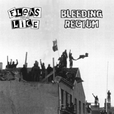Fleas and Lice / Bleeding Rectum, split LP