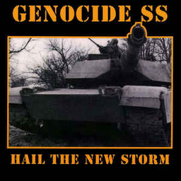 Genocide Superstars, Hail the new storm - LP