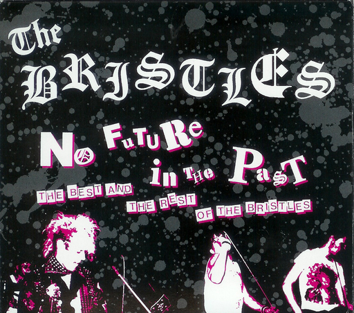 the Bristles, No future in the past - 2CD DVD